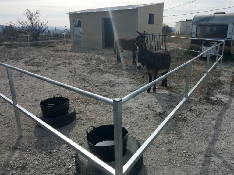 Donkey railings and feed store door